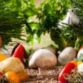 野菜 マクロビオティック