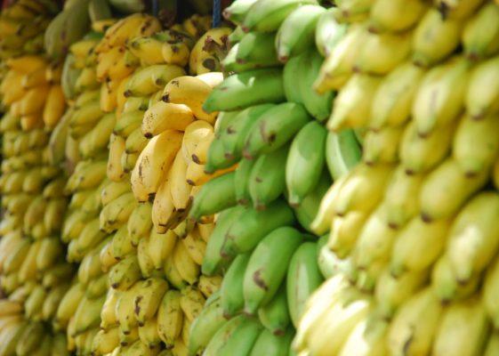バナナ 血糖値 GI