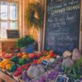ビタミン ミネラル 野菜 栄養